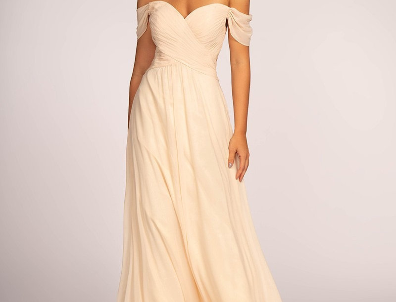 Off-the-Shoulder Chiffon Long Dress (Rent Dress)