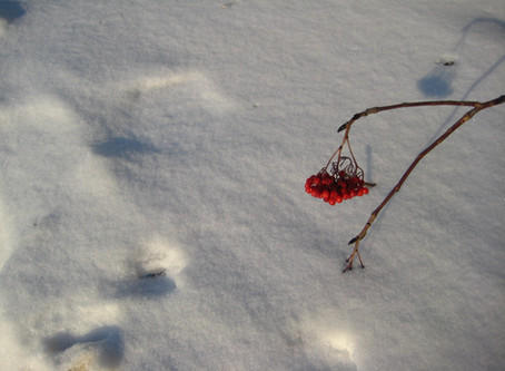 Two Poems to Usher in the New Year