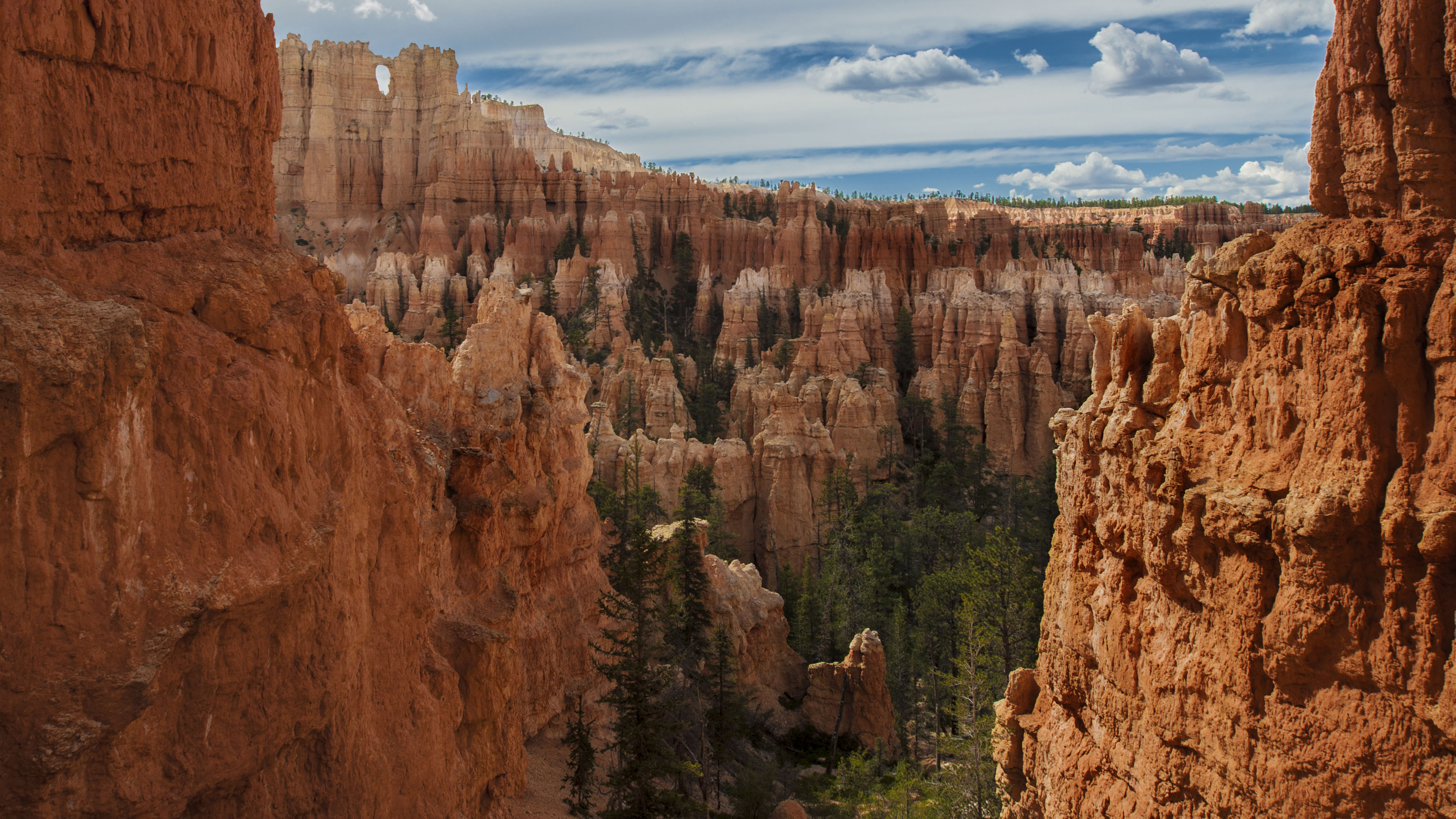 Bryce Canyon, California, USA