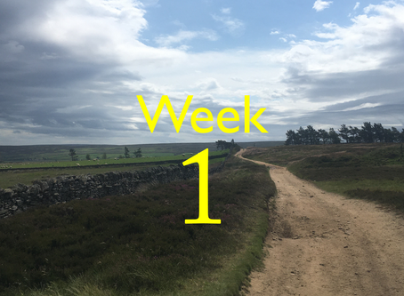 Virtual Camino - Week One update!