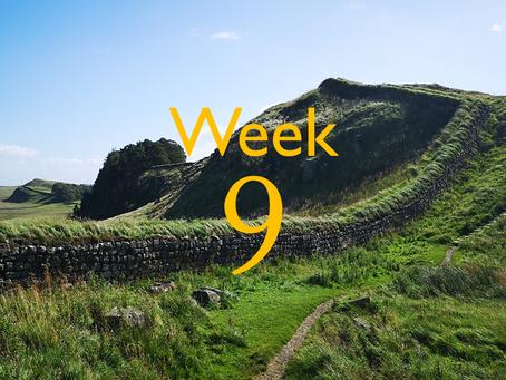 Virtual Camino - week nine update!