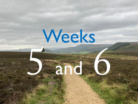 Virtual Camino - weeks five and six