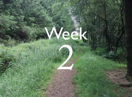 Virtual Camino - Week Two Update