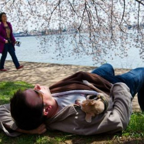 National Napping Day Monday Might Help You Adjust to Daylight Saving Time, How Long's the Ideal Nap?