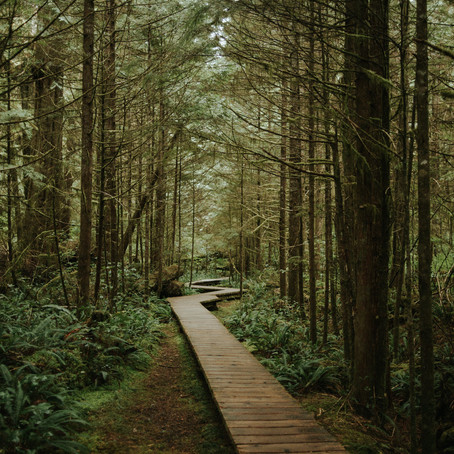 10 Places to visit on Vancouver Island