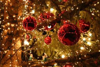 Журнал Focus поздравляет всех с Рождеством!