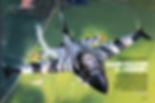 Schermafbeelding 2018-09-01 om 16.55.59_