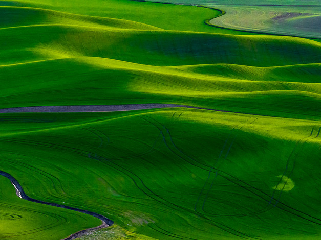 Contours and Curves, Palouse, Washington