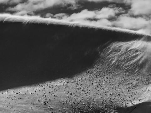 Wind Blown 2, Dallman Bay, Antarctica