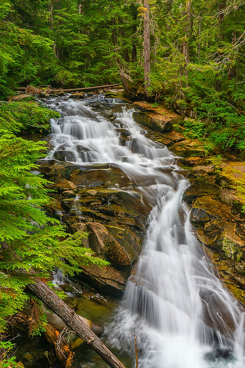 Madcap Falls, Mount Rainier National Park, Washington