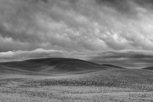 Approaching Storm Near Colton, Washington