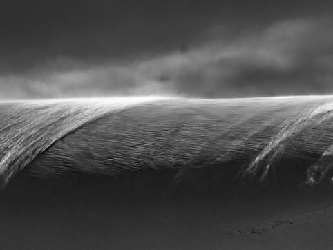 Wind Blown 1, Dallman Bay, Antarctica