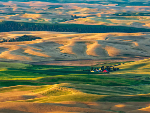 Red Barn in the Palouse