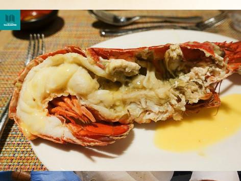 半價食海洋公園萬豪酒店活龍蝦自助餐支持永續發展   Sustainable Seafood Buffer @Marina Kitchen  自助餐wine pairing