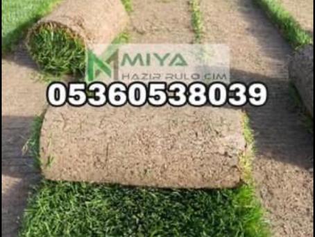 Sakarya Miya Bahçe düzenleme ,hazır rulo çim üretim satış ,peyzaj