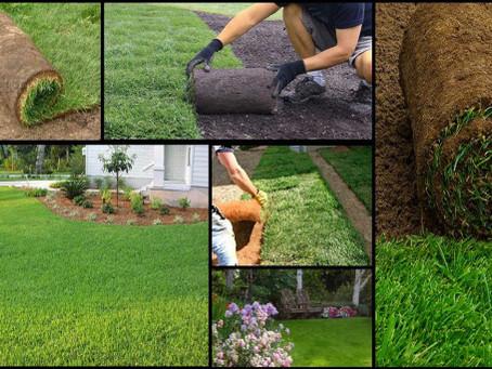 Hazır çim her mevsim uygulanabilir mi?