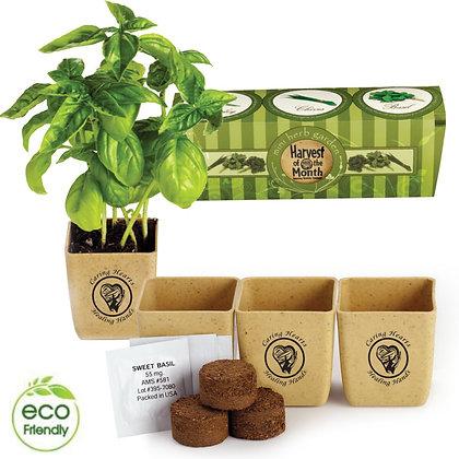 3-Pack Herb GrowPot Eco-Planter