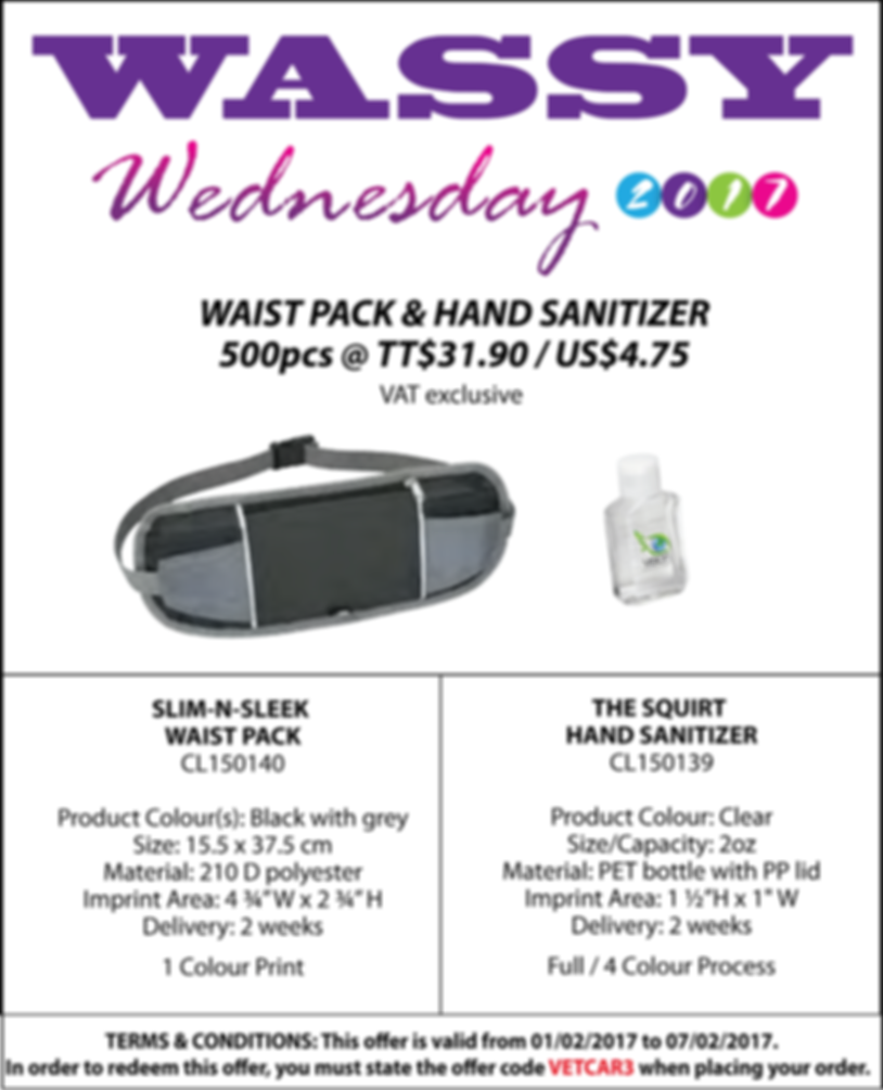 Waist Pack and Hand Sanitizer
