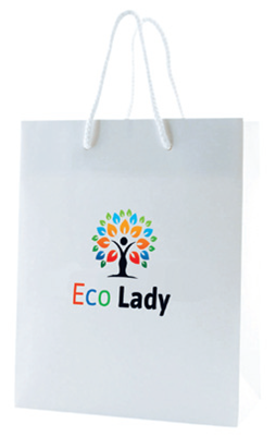 White Paper Gift Bag with Rope Handles - Medium