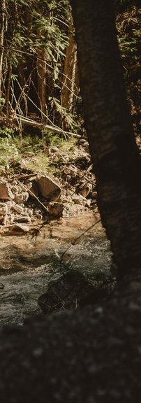 Dusk at The Creek
