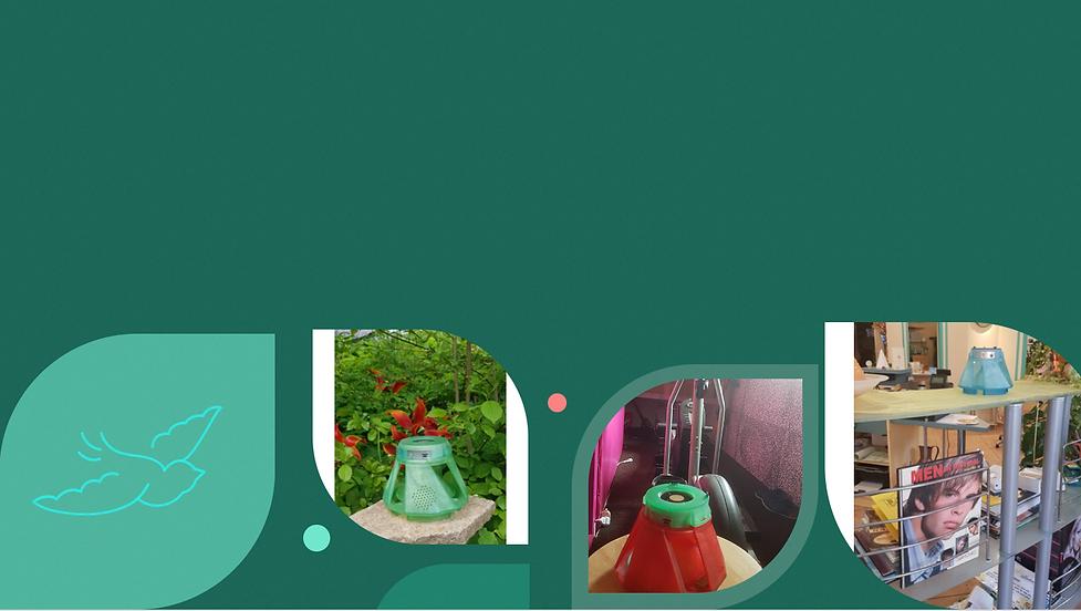 Bildschirmfoto 2021-07-27 um 07.16.42.png