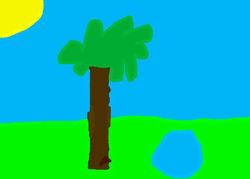 Barnaby's tree.jpg