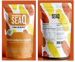 seaQ prototype.jpg