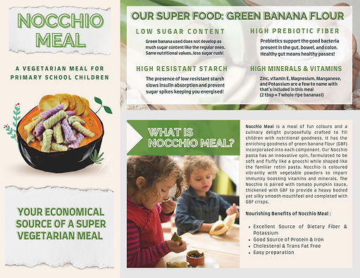 Nocchio Meal Sell-Sheet_Page_1.jpg