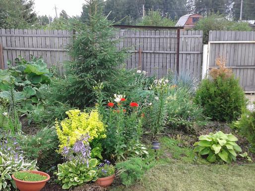 Дачная амнистия возобновлена! Садоводам можно оформить документы на сад!