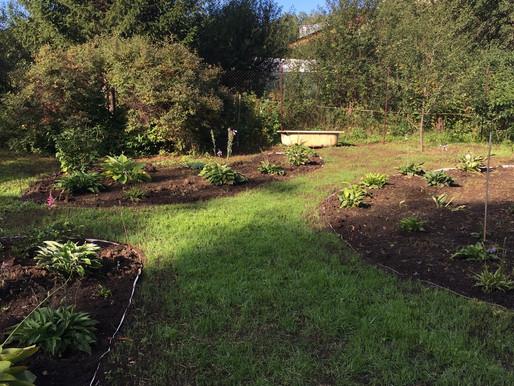 Садоводческий сезон подошёл к концу!