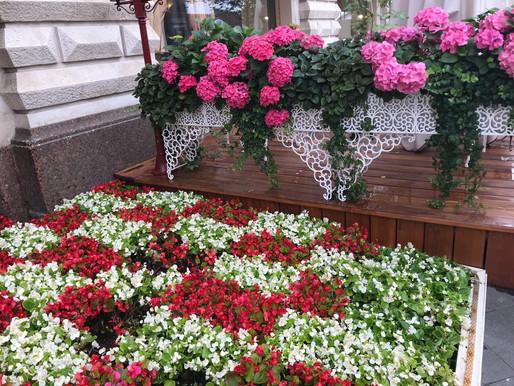 Как вывезти мусор (ТКО) с садовых участков?