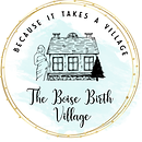 boise birth village logo.png