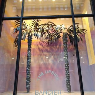Bandier Window.jpeg