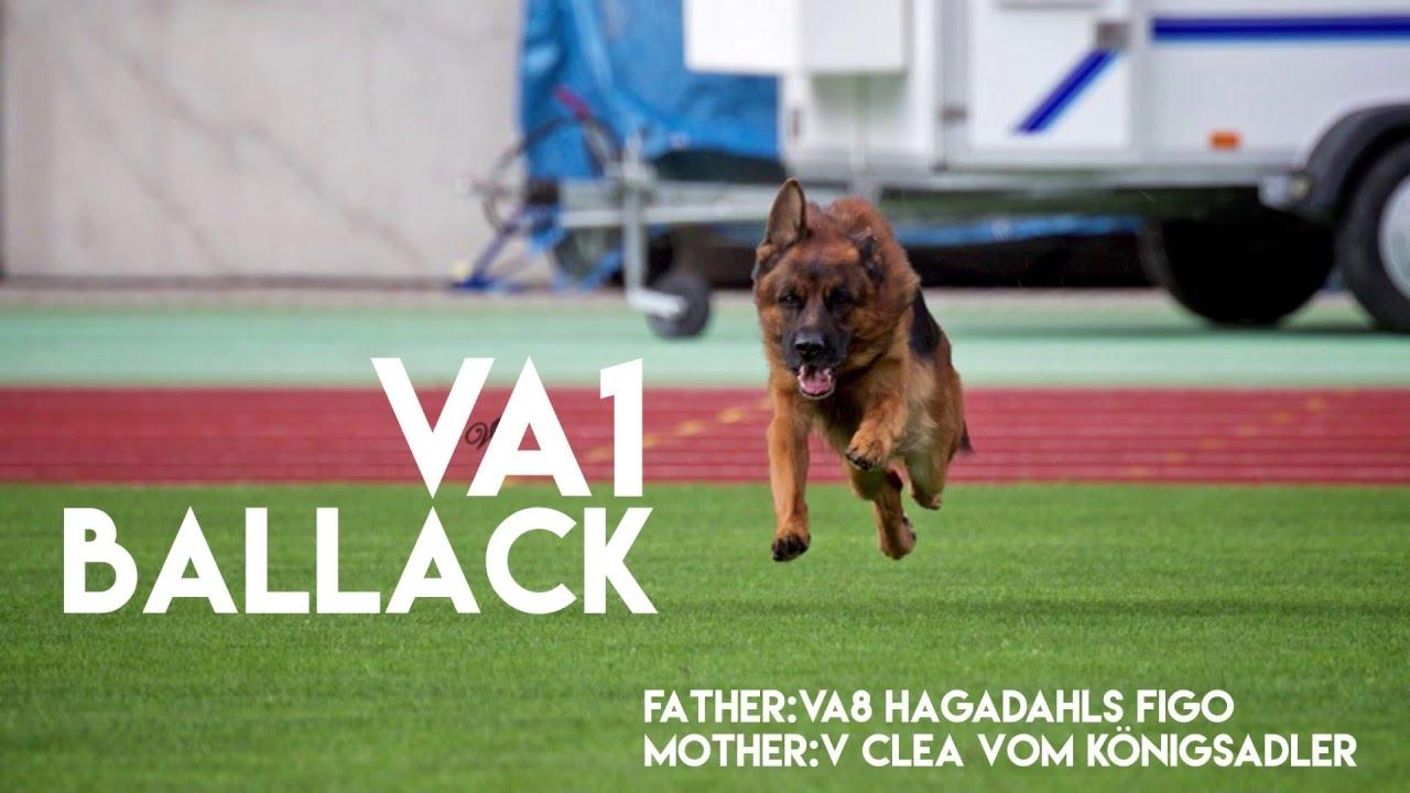 Ballack VA1 run