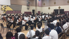 2015 orchestra.jpg