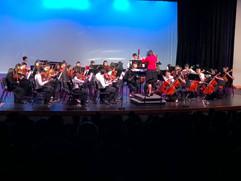 2018 orchestra.jpg