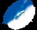 blue-white-combi-light-1080pxx890px.png