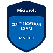 exam-ms100-600x600.png