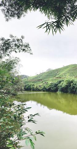 Sri Lanka countryside
