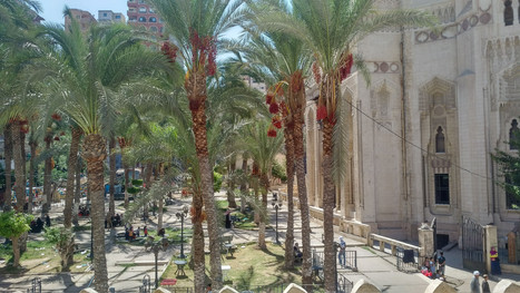 Abu Al Abas Al Mursi mosque in Alexandria - Egypt
