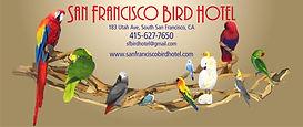 2 Bird Hotel address.jpg