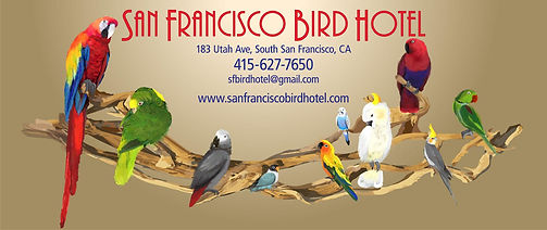 2 Bird Hotel address.jpg