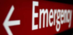 vet emergency.jpg