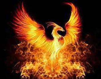 Phoenix.jfif