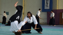 Stage Fudoshin Aikido Cardiff, 2nd to 5th of november