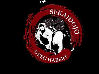 Nouveau Logo Sekaidojo 2021