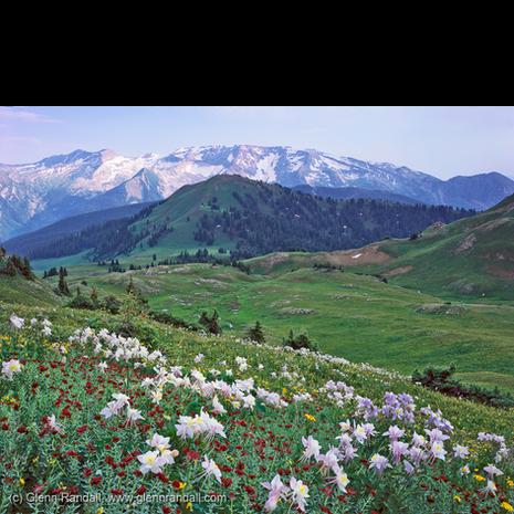 Silver Creek Basin and Treasure Mountain