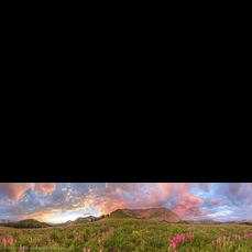 Meadow Mountain Panorama