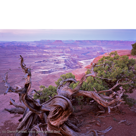 Green River Overlook at Dawn