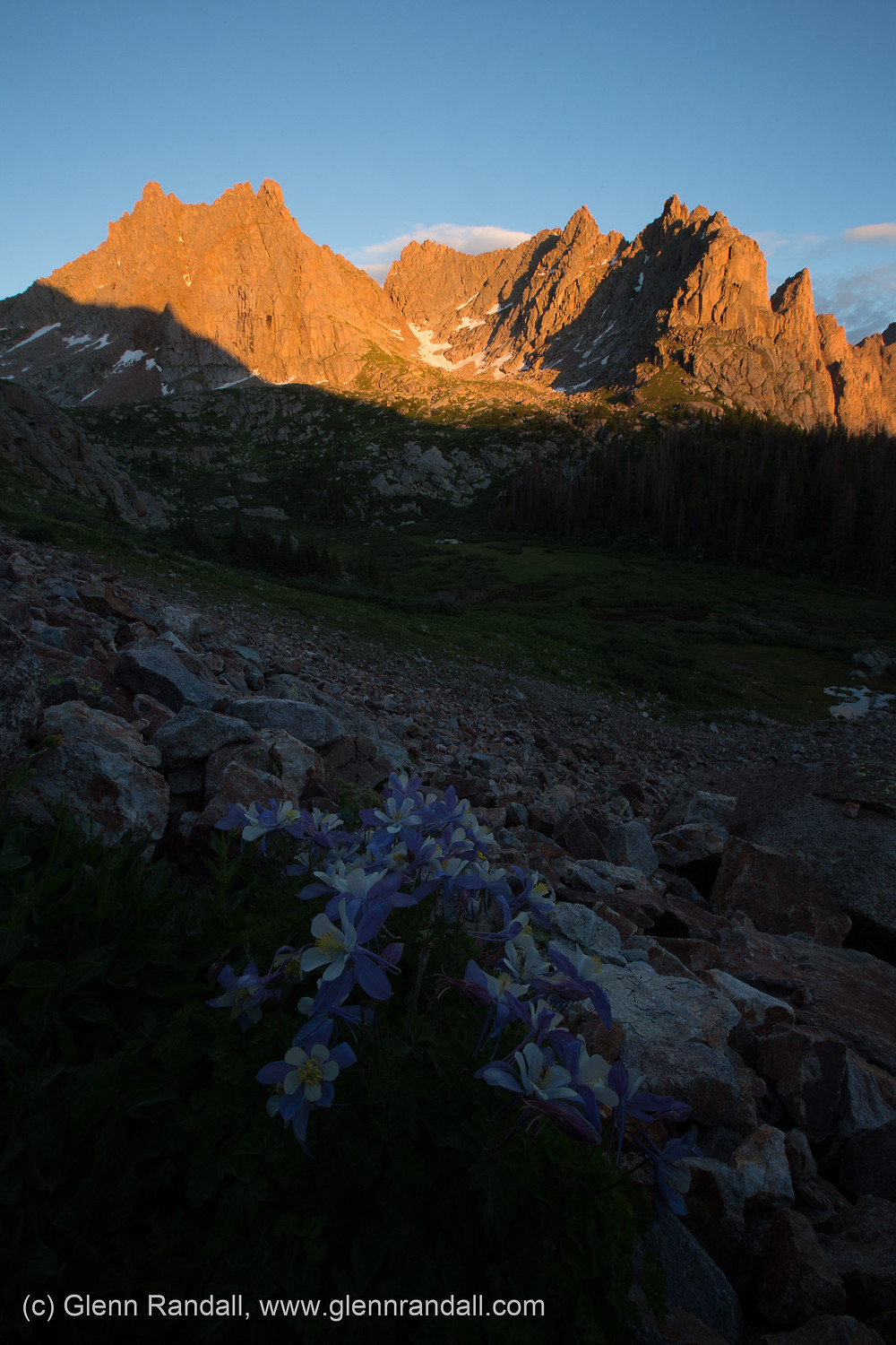 Jagged Mountain and columbine at sunset, Weminuche Wilderness, Colorado